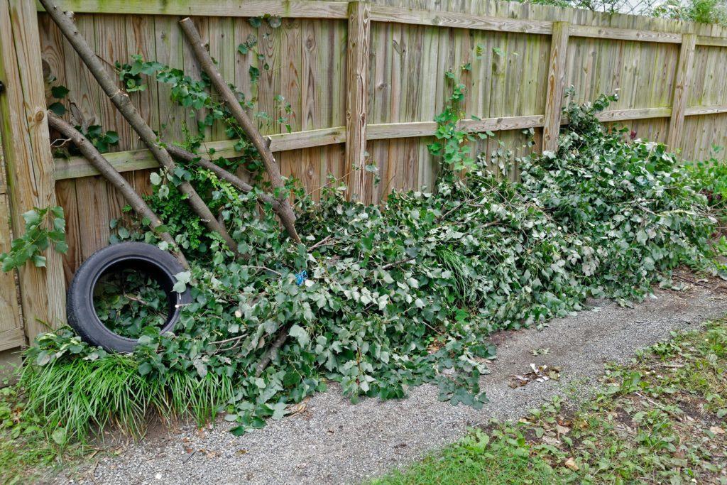 Pile of yard debris for brush removal